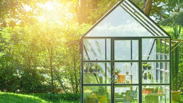 Całoroczny ogród w twojej szklarni